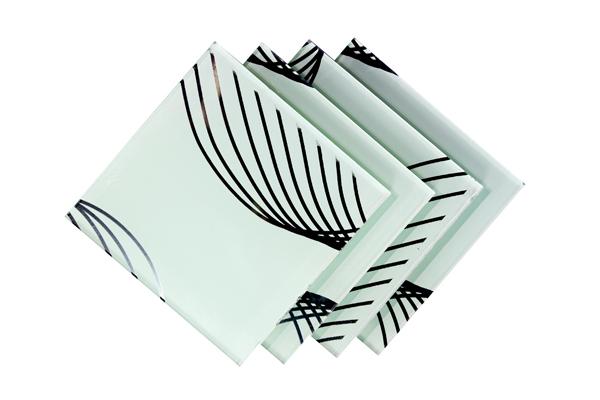 Verre Décoratif Linea Blanc 5 mm Image